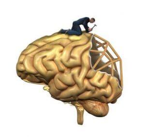 Medicina regenerativa en el cerebro