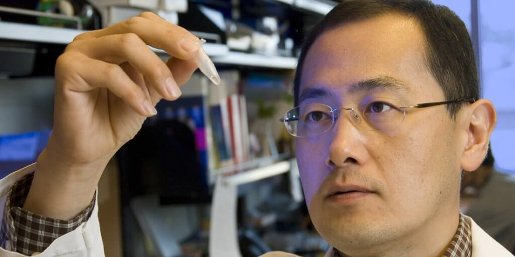 Nobel Shinya Yamanaka células madre pluripotentes